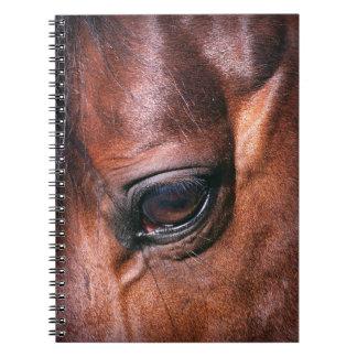 eye of horse spiral notebook