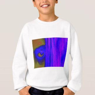 Eye of Light Sweatshirt