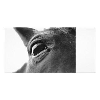 Eye of pony 1 card
