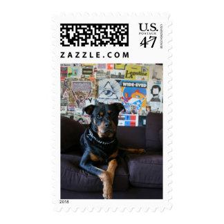 Eye of Providence Stamp