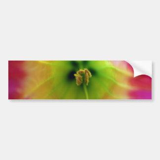 Eye of the flower bumper sticker