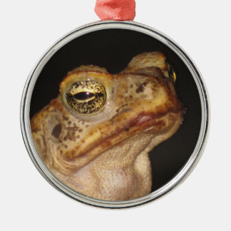 Eye of the frog. round metal christmas ornament