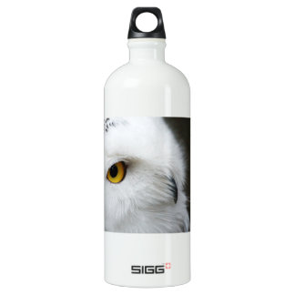 Eye of the Owl Aluminum Water Bottle
