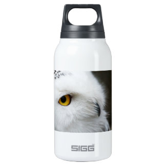 Eye of the Owl Insulated Water Bottle