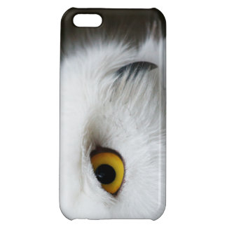 Eye of the Owl iPhone 5C Cases