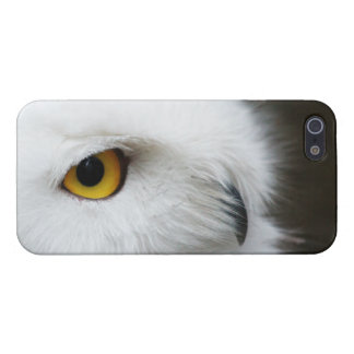 Eye of the Owl iPhone SE/5/5s Case