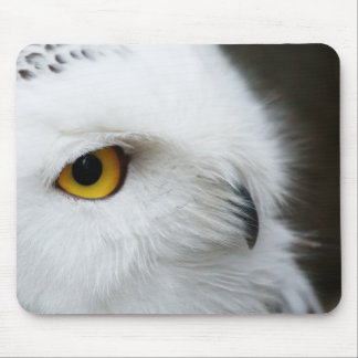 Eye of the Owl Mouse Pad