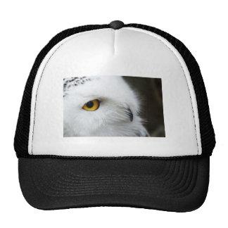 Eye of the Owl Trucker Hat