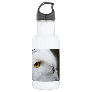 Eye of the Owl Water Bottle