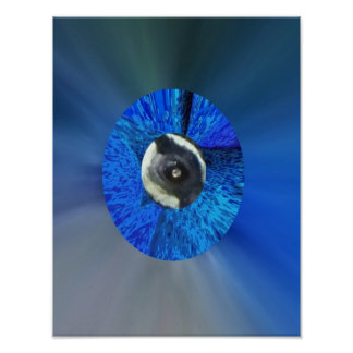 Eye of the Peacock Poster