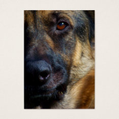 Eye of the Shepherd Business Cards at Zazzle