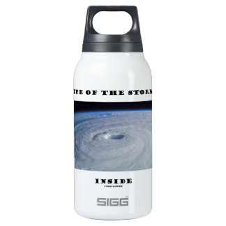Eye Of The Storm Inside (Hurricane's Eye) SIGG Thermo 0.3L Insulated Bottle