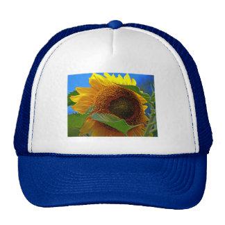 Eye of the Sunflower Trucker Hat