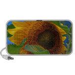 Eye of the Sunflower Laptop Speakers
