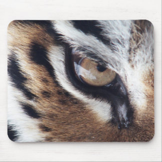 Eye Of The Tiger 1 Mousepads