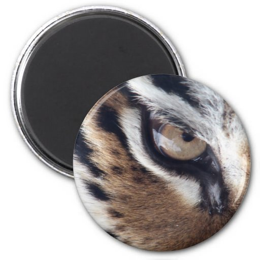 Eye of the Tiger 2 Inch Round Magnet