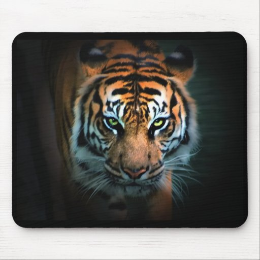 Eye of the Tiger Mouse Pad