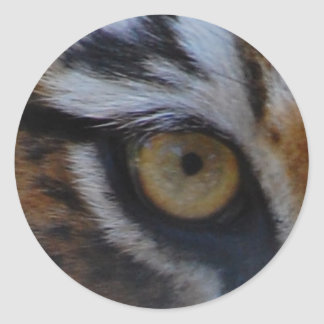 Eye of the tiger stickers