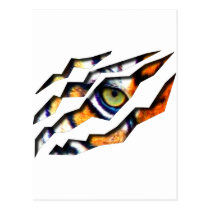 tiger, cat, big, eye, wild, nature, tigers, digital, graphic, wildlife, eyes, Postcard with custom graphic design