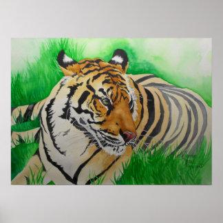 Eye of the Tigress Poster