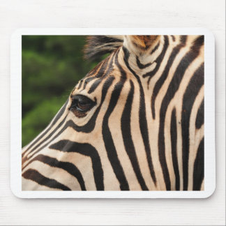 Eye of the Zebra Mouse Pad