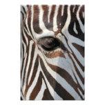 Eye of the Zebra Photo Art