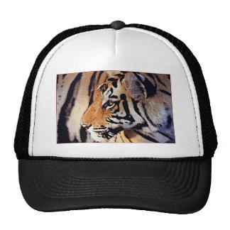 Eye of Tiger Trucker Hat