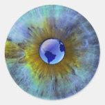 Eye On Earth Classic Round Sticker