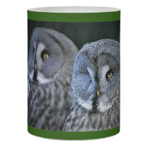 Eye on the prize Owl candle