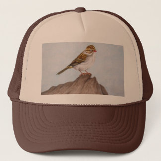 Eye on the Sparrow Hat