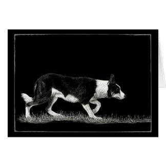 """Eye See Ewe"" - Border Collie Card"