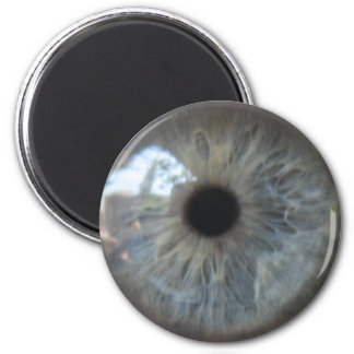 Eye See You Fridge Magnet