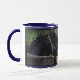 Eye to Eye Horse Mugs