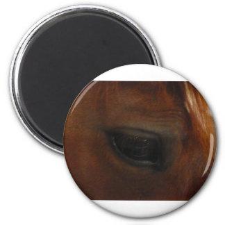 Eye To Eye Magnet