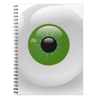 eyeball-3097 notebook