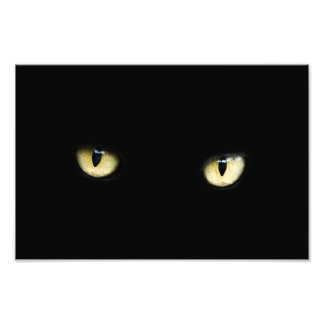 eyes-218185 eyes cat   black  staring yellow  dark photo print
