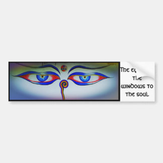Eyes are the windows to the soul bumper sticker