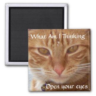 Eyes_ del gato imán de frigorifico