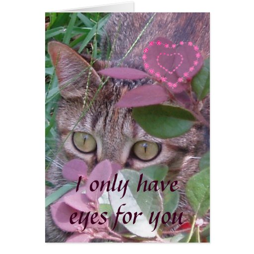 Eyes for You Valentine Card