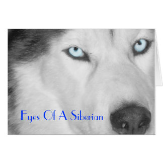 Eyes Of A Siberian II (B/W) Card