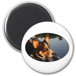 Eyes of a Star 2 Inch Round Magnet