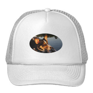 Eyes of a Star Mesh Hat