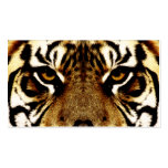 Eyes of a Tiger Double-Sided Standard Business Cards (Pack Of 100)