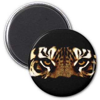 Eyes of a Tiger Magnet