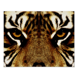 Eyes of a Tiger Poster