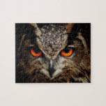 Eyes Of An Owl Jigsaw Puzzle