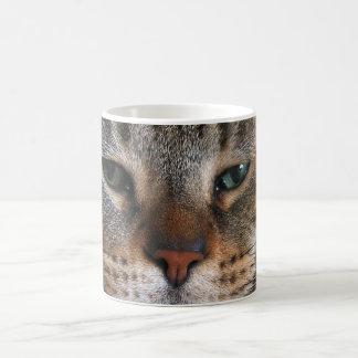 Eyes of Cat Coffee Mugs