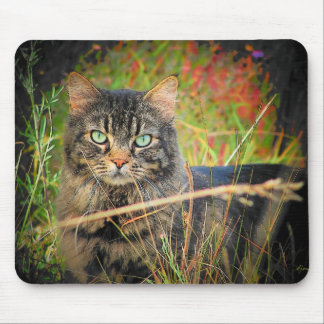 Eyes of the hunter mouse pad