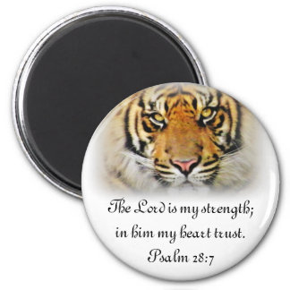 Eyes of the Tiger,Love_ Magnet