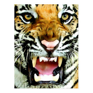 Eyes of Tiger Postcard